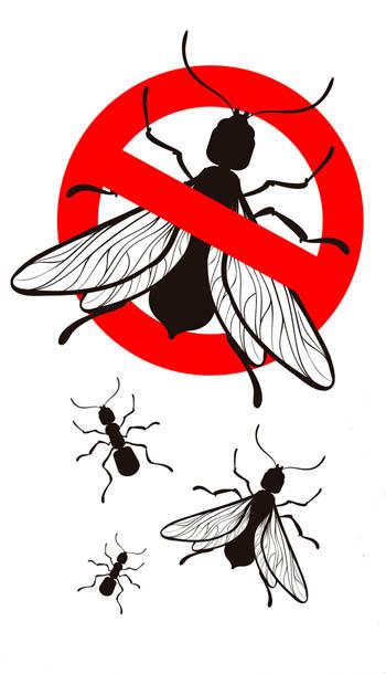 Pest Control SEO Plans